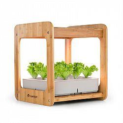 Blumfeldt Urban Bamboo, hydroponický rostlinný systém, 12 sazenic, 24 W, LED, 7 litrů, bambus